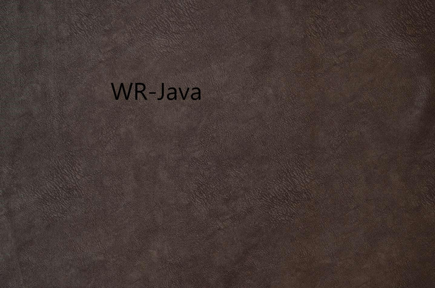 WR-Java